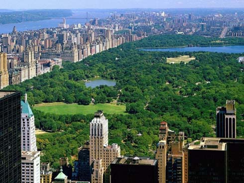 manhattan helicopters sightseeing tours new york ny with Uws on Luces De New York 2050x1250 furthermore Hornblower Cruises New York further New York furthermore Liberty Helicopters Review together with New York Wallpaper.